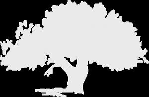 Tru Wood Logo